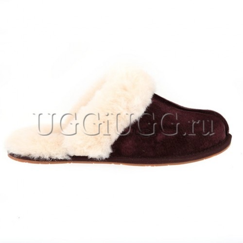 Женские тапочки угги коричневые UGG Slipper Scufette II Chocolate