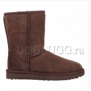 UGG Men Classic II Short Chocolate