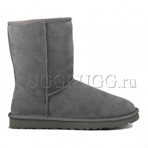 UGG Men Short Grey